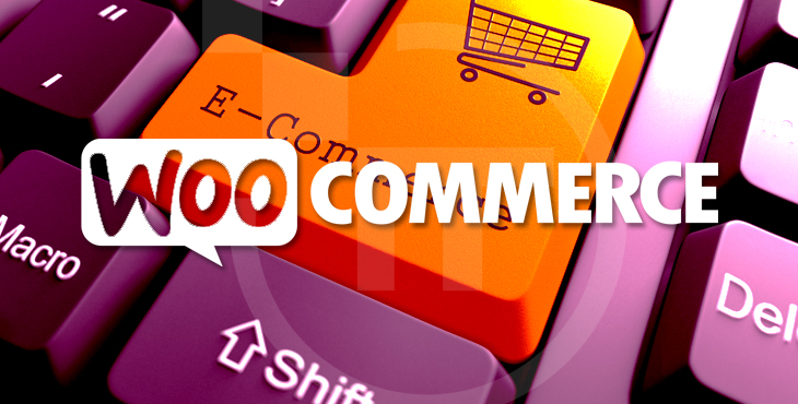 Factors to Choose Woocommerce  for eCommerce website